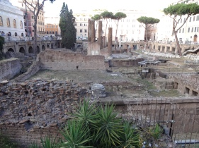 Largo Argentina, where Caesar was assassinated by Brutus - tons of cats live here!