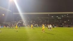 Go Fulham!